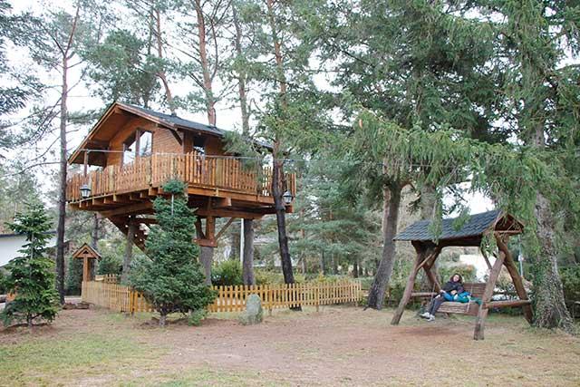 casa del arbol airbnb
