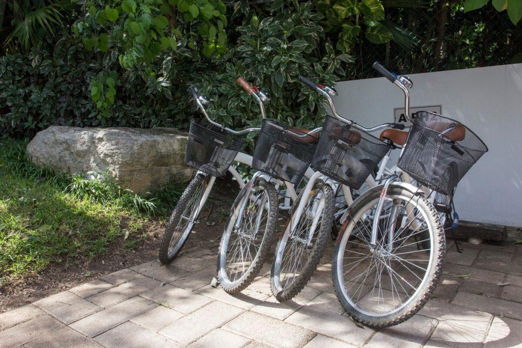 bicicleta alquiler playa del carmen